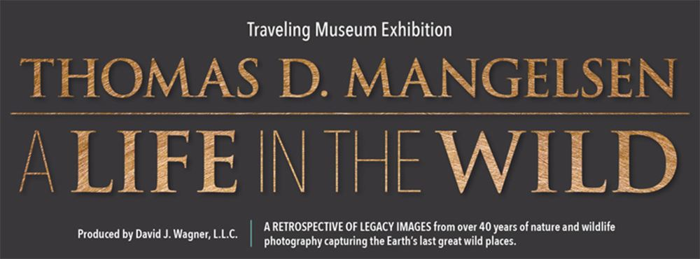 Thomas D Mangelsen exhibit info